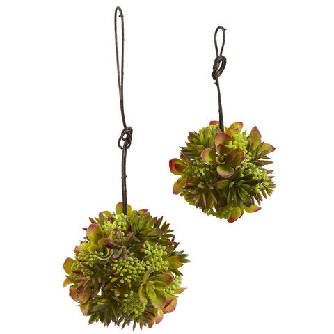 "7"" & 5"" Mixed Succulent Balls (Set of 2)"