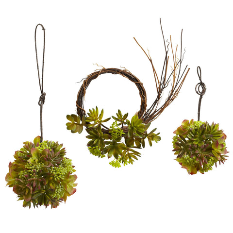 Mixed Succulent Wreath & Balls (Set of 3)