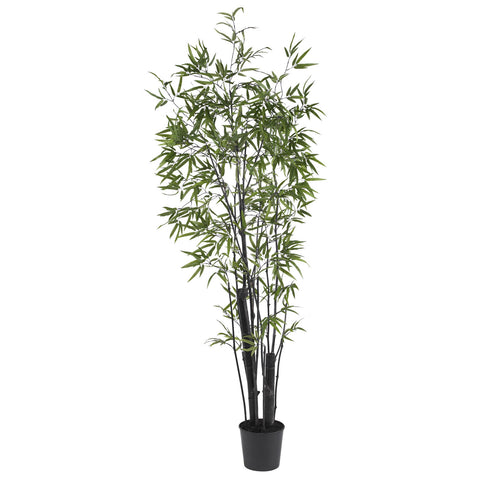 6.5' Black Bamboo Tree (2 Thick Trunks)