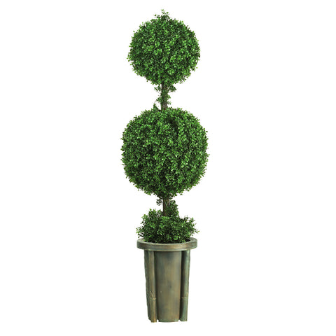 5' Leucodendron Ball Topiary (Indoor/Outdoor)