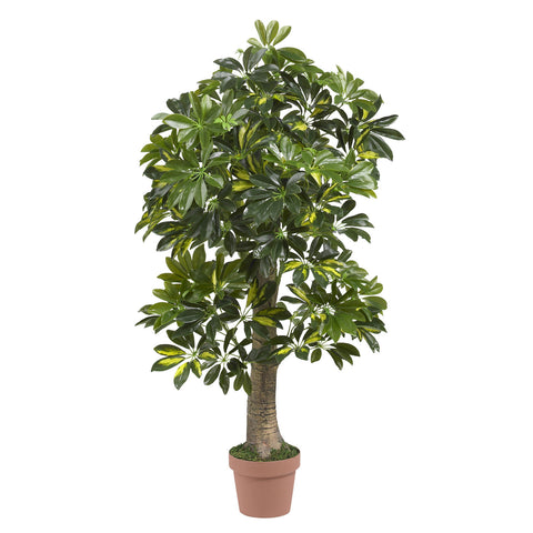 4' Schefflera Silk Tree (Real Touch)