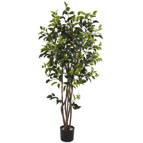 5' Ficus Bushy Silk Tree