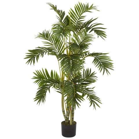 4' Areca Palm Silk Tree