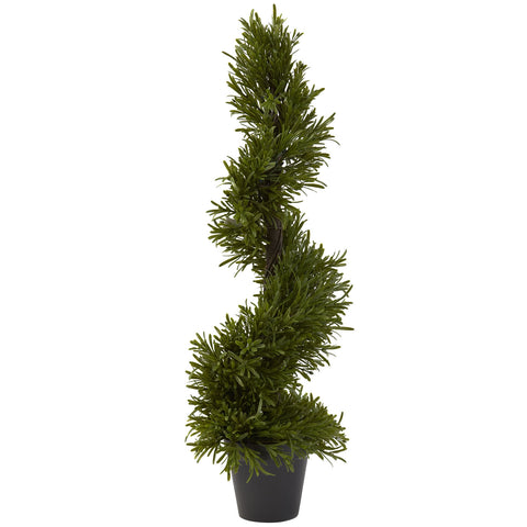 "30"" Rosemary Spiral Tree (Indoor/Outdoor)"