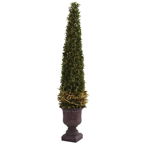 Mixed Golden Boxwood & Holly Topiary w/Urn