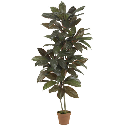 5' Cordyline Silk Plant (Real Touch)