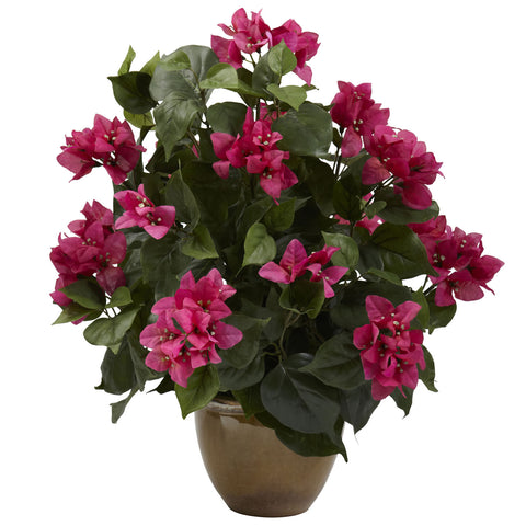 Beauty Bougainvillea w/Ceramic Vase