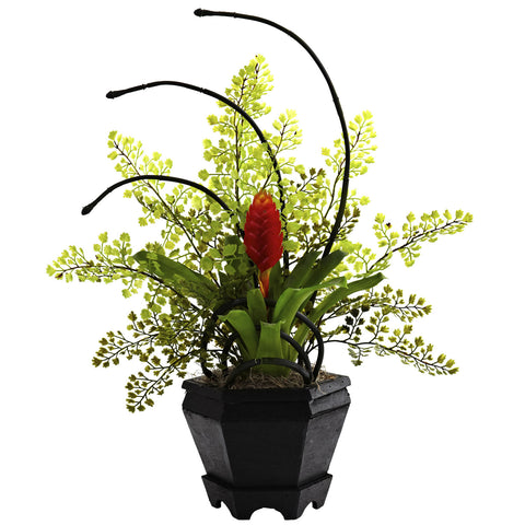 Red Bromeliad & Maidenhair Fern Arrangement