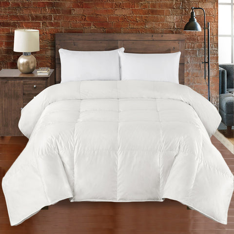 Silk Goose Down Comforter 450TC By Abripedic