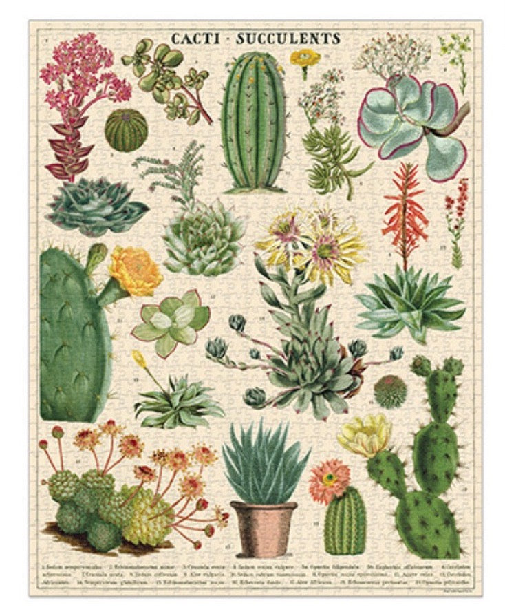 Cavallini and Co. Cacti and Succulents 1000 piece vintage puzzle from Diament Jewelry, a gift shop in Washington, DC.