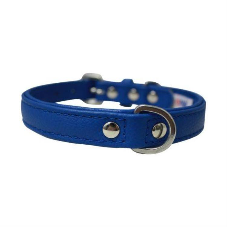 Angel Pet - Alpine Cobalt Collar
