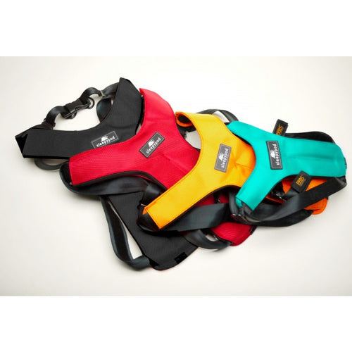 Sleepypod Sport harness