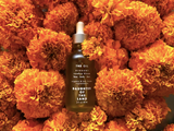 Daughter of the Land Organic Rosehip Oil