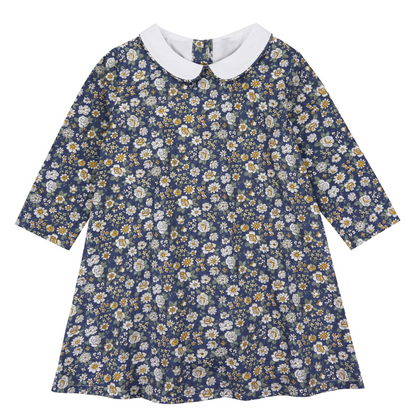 Little Cotton Clothes Betty Dress in Blue Floral