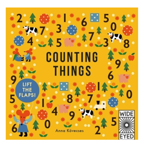 Counting Things Lift the Flap Book