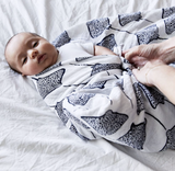Lewis Swaddle Stingray