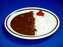 Vegetable Curry & Rice Replica - Fake Food Japan
