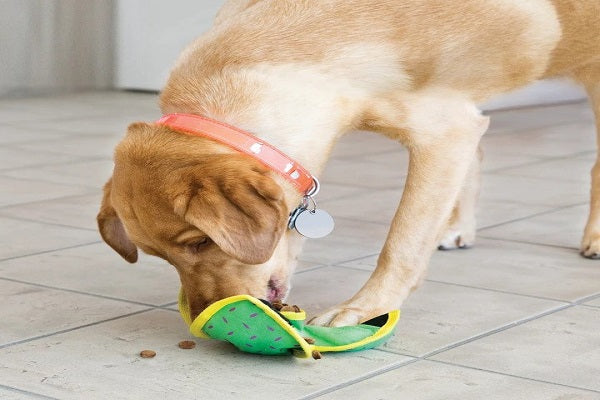 How To Choose The Best Dog Food For Your Pet