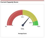 The Sales Capacity Assessment -- Measure Sales Team Effectiveness