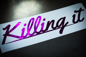 Killing it [BIG] - Zillalife - 1