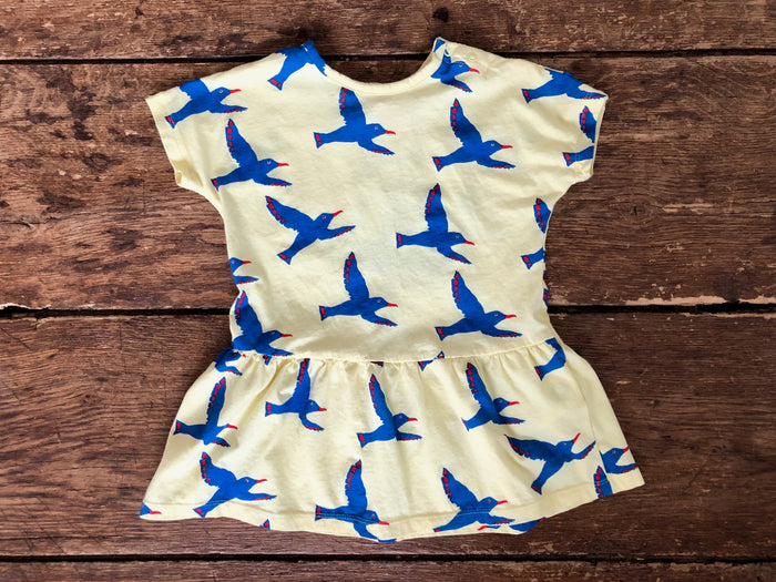 Dress | Bluebirds