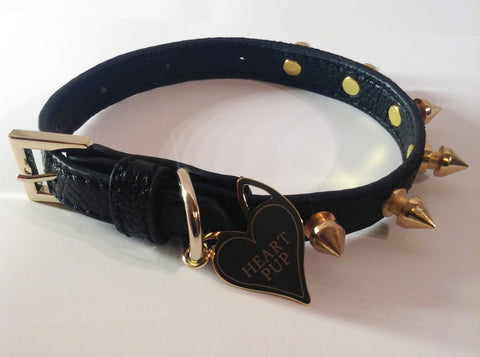 BLACK LEATHER STUDDED SMALL DOG COLLAR