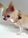 GOLD SOFT LEATHER STUD COLLAR WITH HEART PUP TAG YOU CAN ENGRAVE