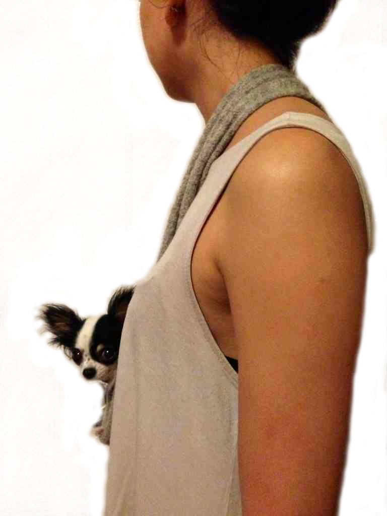 how to make a puppy sling carrier