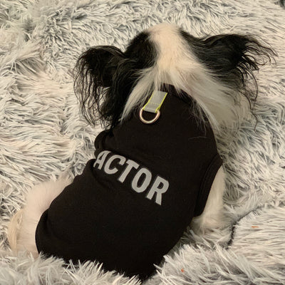 Actor d-ring pet harness t-shirt with reflective strip for small dogs