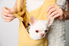 Scarf Sling Yellow Pocket Dog Carriers