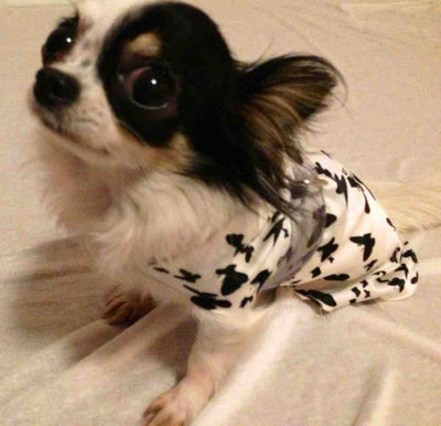 BUTTERFLY SMALL DOG DRESS