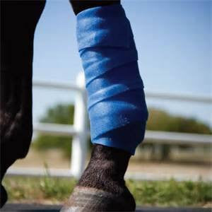 Pro Equine Blue Kool Therapeutic Wrap