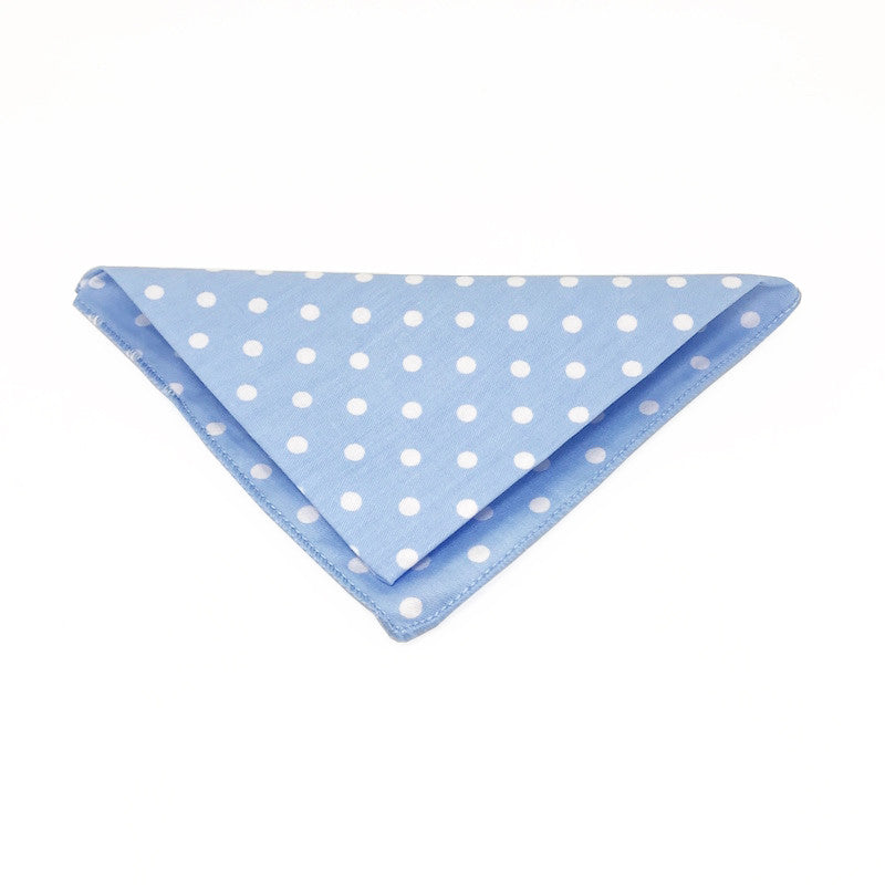 Pocket Squares - Ray Pocket Square - The Little Link