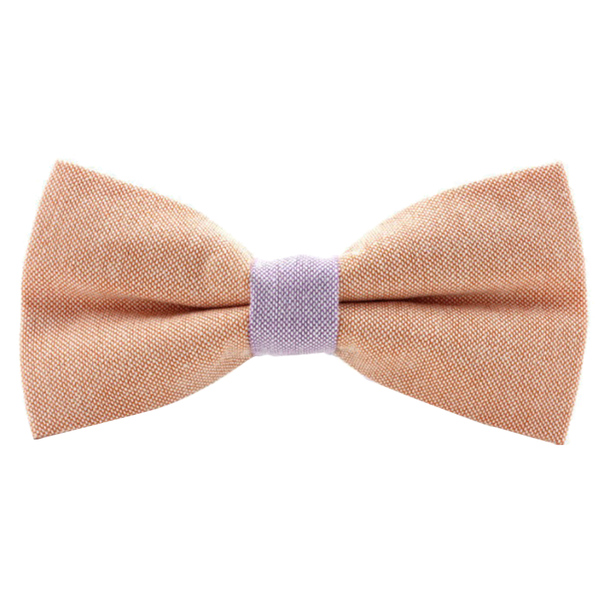 Orange and Pink Pastel Bow Tie - Zest