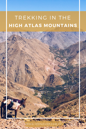 Trekking the High Atlas Mountains in Morocco