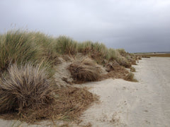 The Dunes at East Head on West Wittering beach