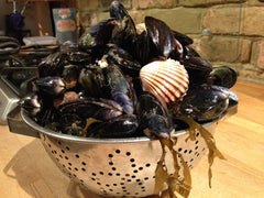 Mussles and clams foraged from West Wittering beach