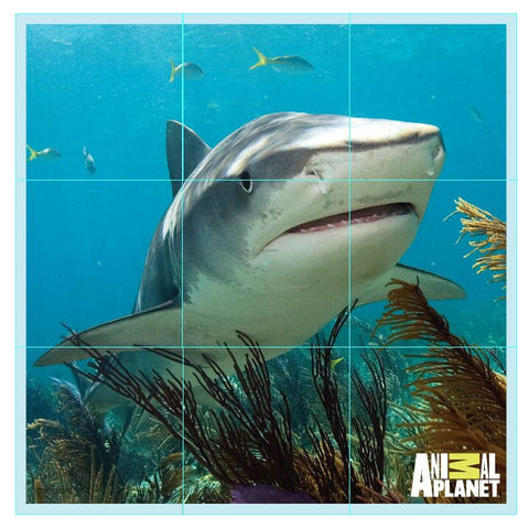 ANIMAL PLANET Puzzle Cubes - SHARKS