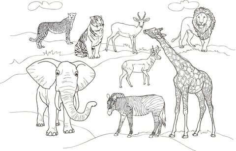 Recreate - Reusable Coloring mat - WILD ANIMALS