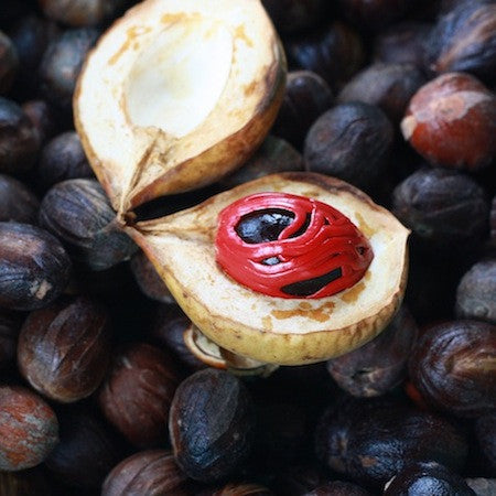 what is a nutmeg?