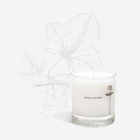 Antidris Cassis - Candle