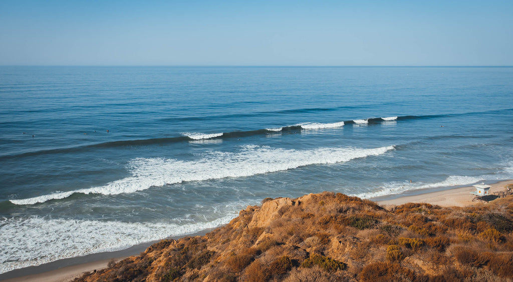 Almond x Surfrider Foundation 2020/2021