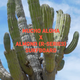 R-Series 5'4 Secret Menu | Mucho Aloha