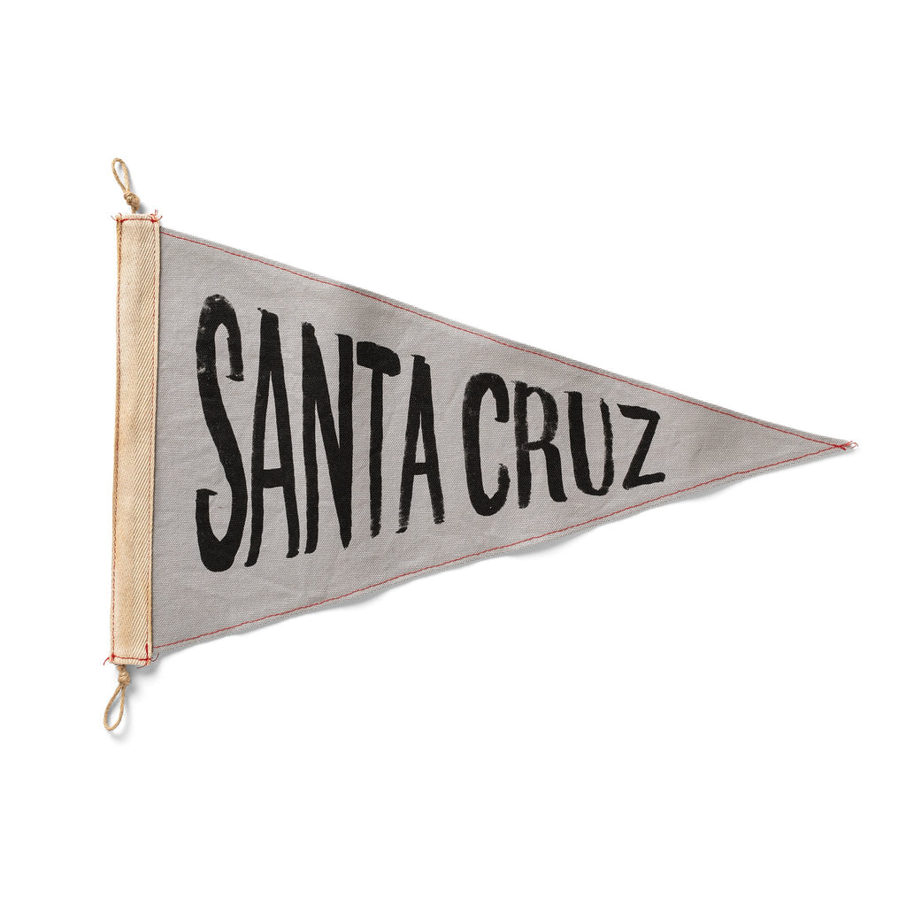 Slightly Choppy <br> Santa Cruz Flag