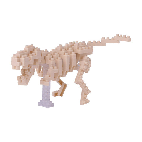 Mini T-Rex Skeleton