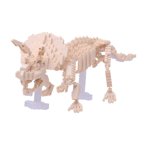 Triceratops Skeleton - OUT OF STOCK