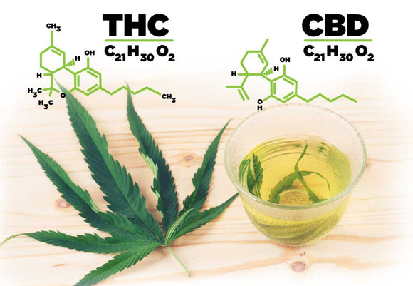 CBD or THC: Lets get to know the difference!!
