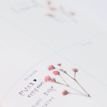 APPREE: Pressed Flower Sticker (Gypsophila)