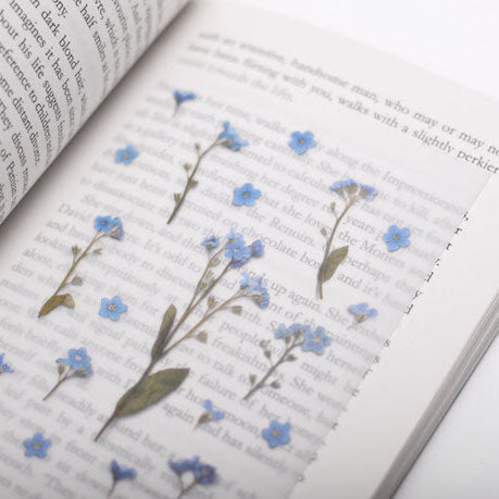 APPREE: Pressed Flower Sticker (Forget-Me-Not)