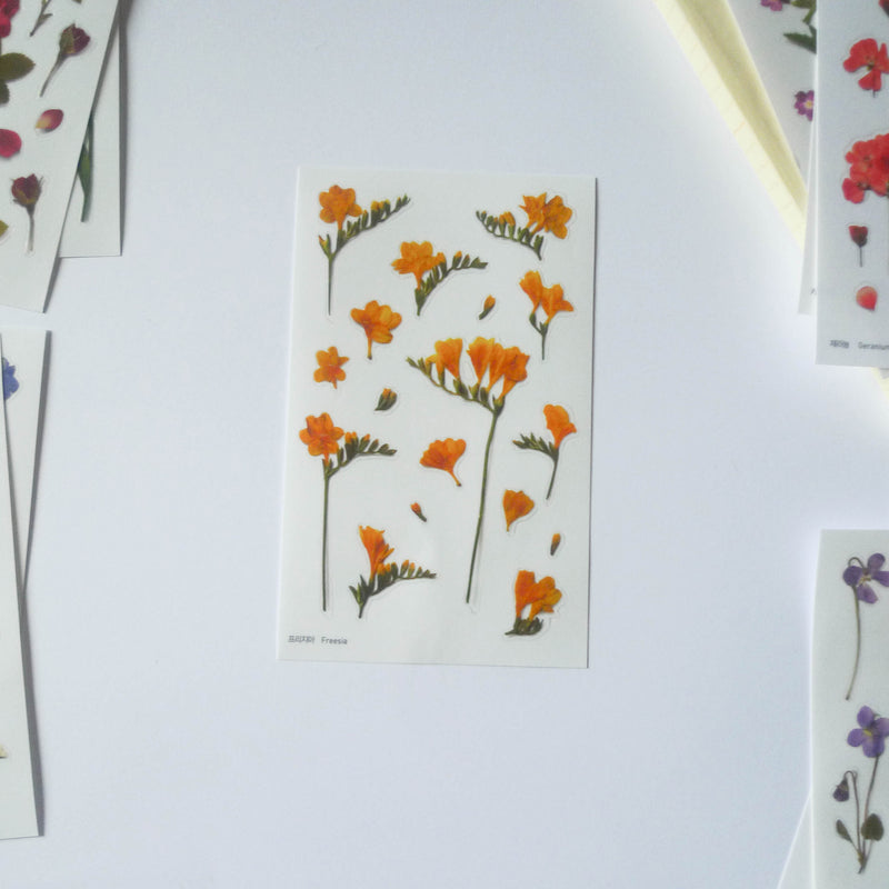APPREE: Pressed Flower Sticker (Freesia)